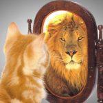 Il concetto di autostima