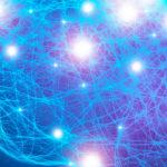 Come il cervello si modifica